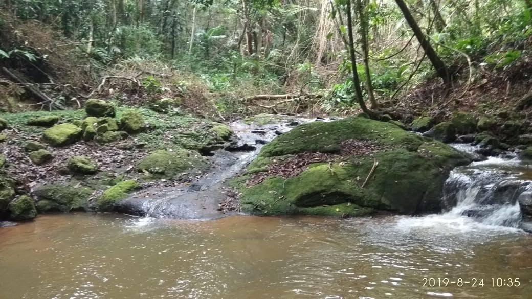 Sitio Juquitiba com nascente e cachoeira